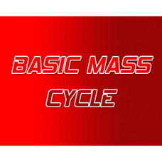 Basic Mass Steroid Cycle