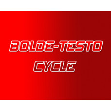 Testo - Bolde Steroid Cycle