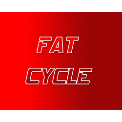 Fat Burner Steroid Cycle